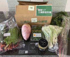 三浦野菜市場のお試し・他社の野菜宅配との比較と口コミ21