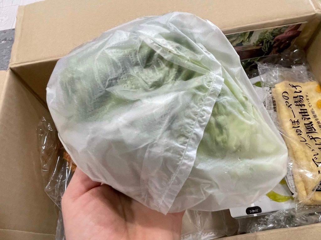 有機野菜宅配らでぃっしゅぼーやの不揃い野菜&食材セットのお試し・口コミ28