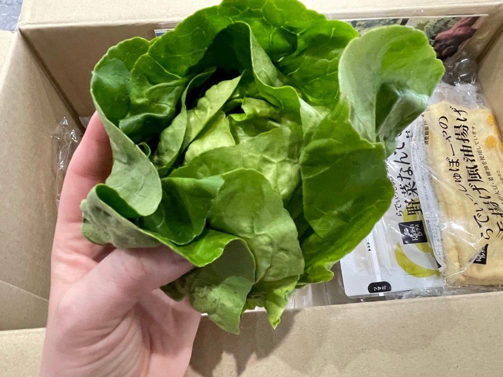 有機野菜宅配らでぃっしゅぼーやの不揃い野菜&食材セットのお試し・口コミ29