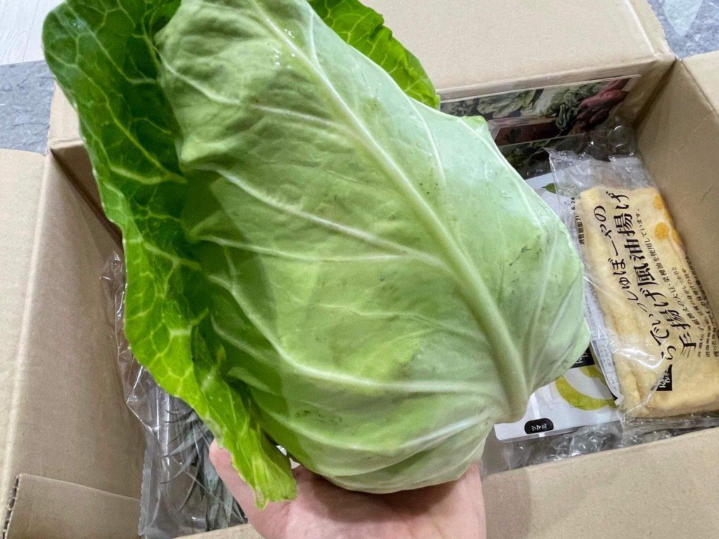 有機野菜宅配らでぃっしゅぼーやの不揃い野菜&食材セットのお試し・口コミ31