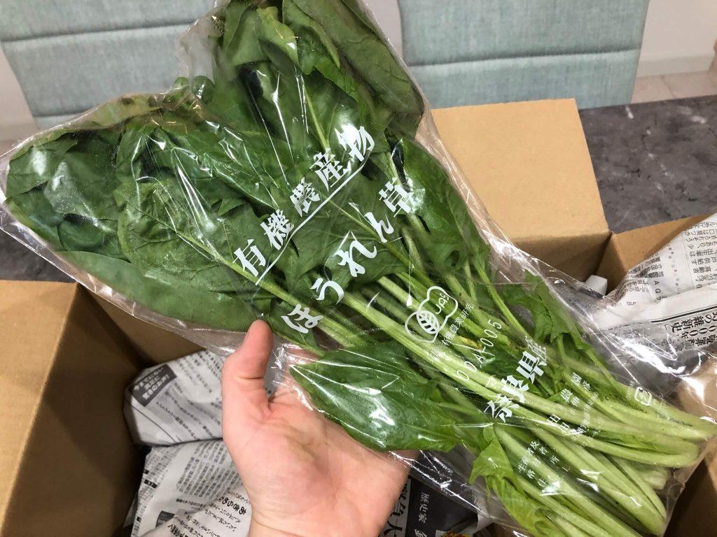 奈良の化学肥料・化学農薬不使用野菜宅配サービス「さん・らいふ」の口コミと評判34