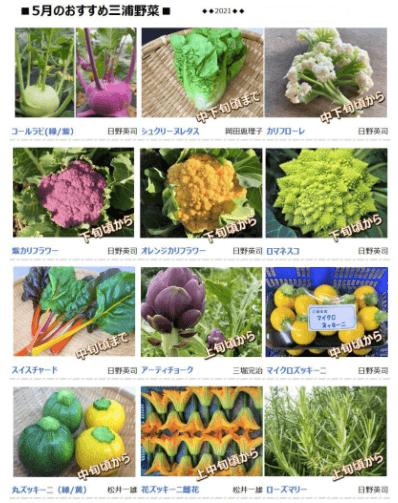 三浦野菜市場のお試し・他社の野菜宅配との比較と口コミ3