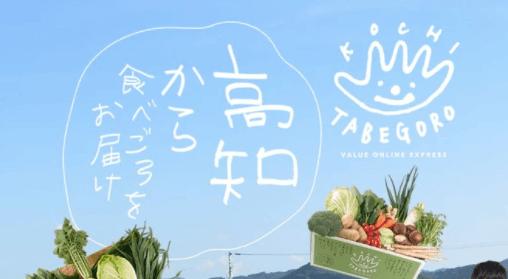 高知の有機野菜宅配「TABEGORO」の口コミ1