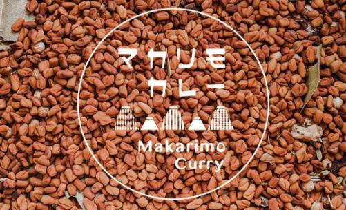 野菜たっぷり・無添加完全菜食の本格カレー宅配「Makarimo Curry」の口コミと評判36