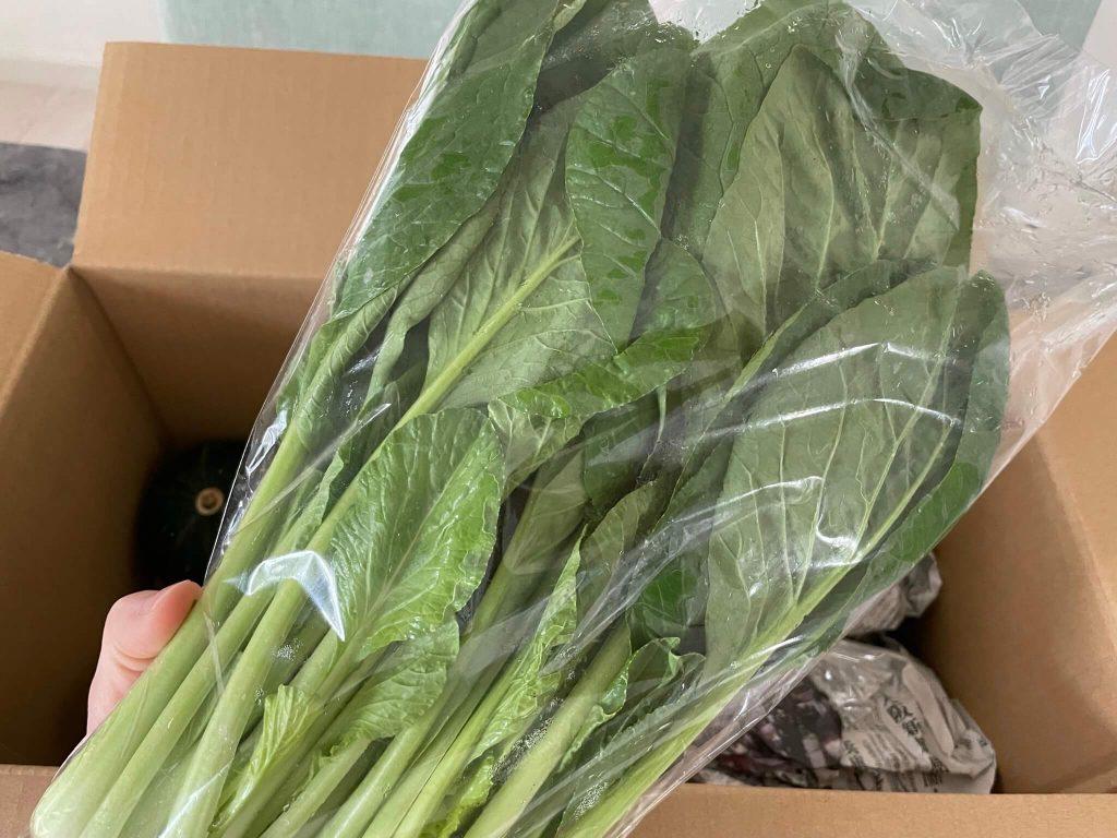 高知の有機野菜宅配「TABEGORO」の口コミ14