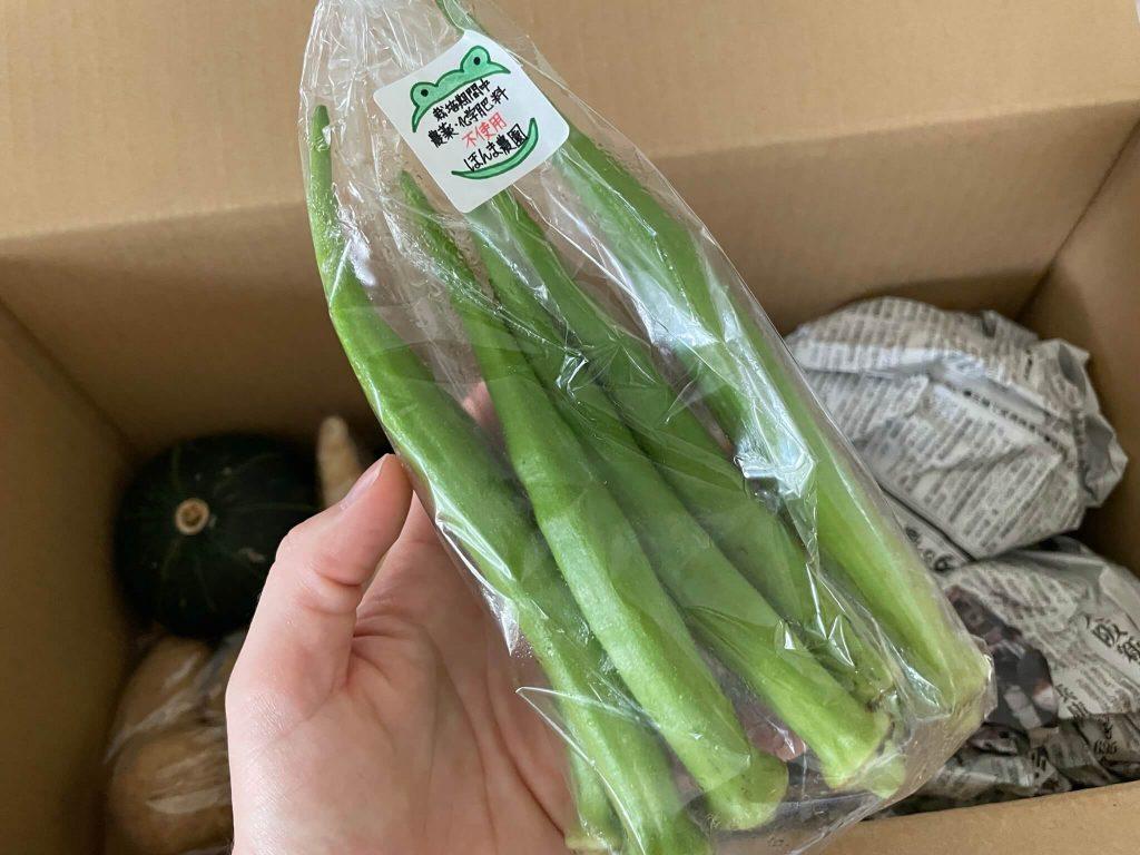 高知の有機野菜宅配「TABEGORO」の口コミ16