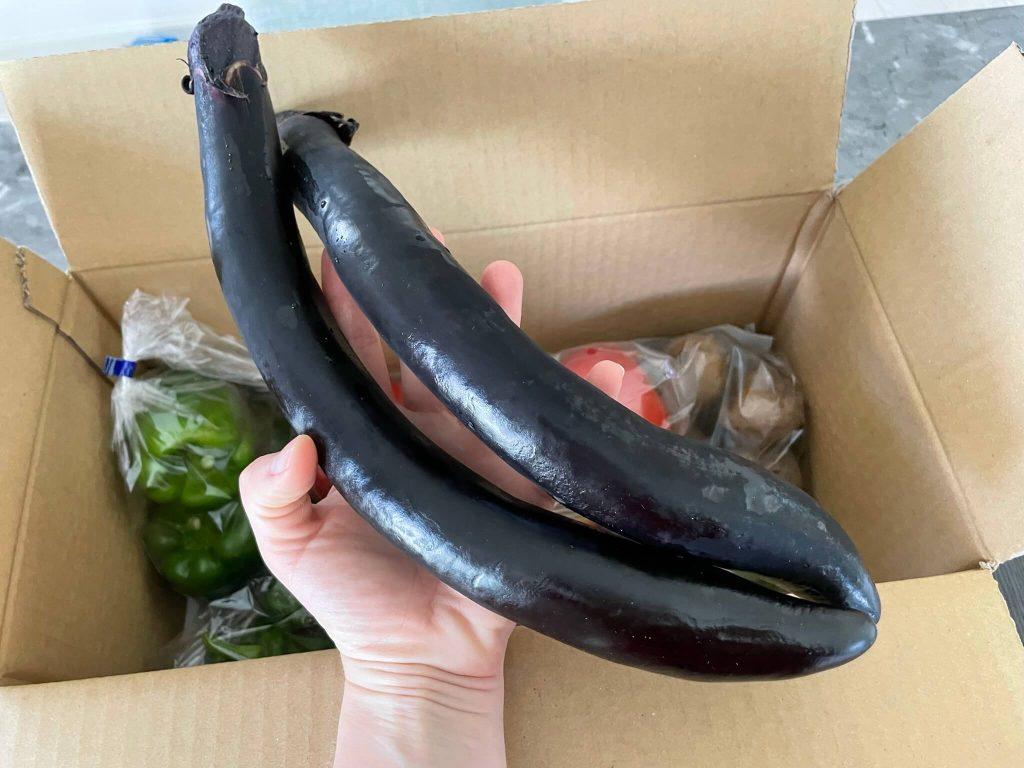 京都市の無農薬・有機肥料のオーガニック野菜宅配「あらい農園」の口コミ17