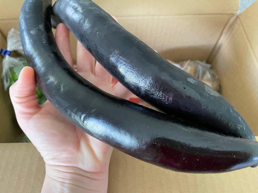 京都市の無農薬・有機肥料のオーガニック野菜宅配「あらい農園」の口コミ18