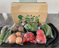 京都市の無農薬・有機肥料のオーガニック野菜宅配「あらい農園」の口コミ27