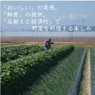 高知の有機野菜宅配「TABEGORO」の口コミ7