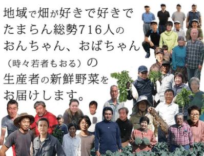 高知の有機野菜宅配「TABEGORO」の口コミ6