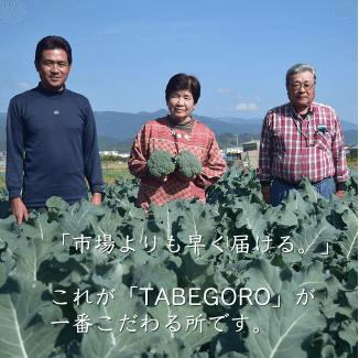 高知の有機野菜宅配「TABEGORO」の口コミ8
