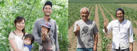 SUN SMILE(サンスマイル):無農薬・無肥料野菜と無添加食品の宅配サービスの口コミ・評判8