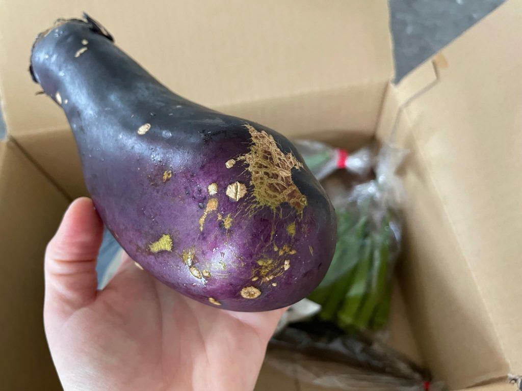 宮崎県の有機野菜宅配「自然食品店.com」のオーガニック野菜セットの口コミ19