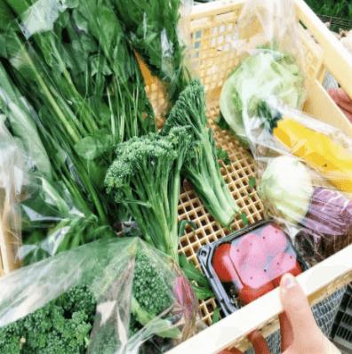 福岡・糸島の有機野菜・自然栽培野菜宅配の松の実ファーム:口コミ2