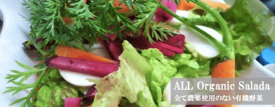 福岡・糸島の有機野菜・自然栽培野菜宅配の松の実ファーム:口コミ8