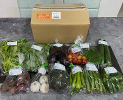 福岡・糸島の有機野菜・自然栽培野菜宅配の松の実ファーム:口コミ28