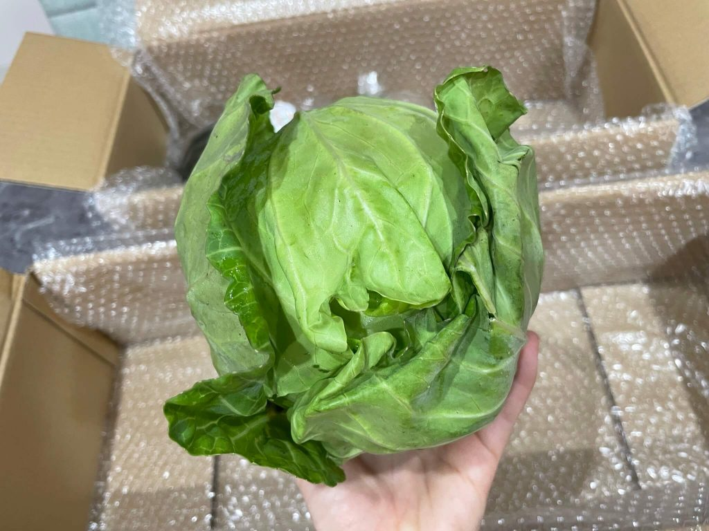 野菜ソムリエが評価:有機野菜宅配「土の味」の評判と口コミ25