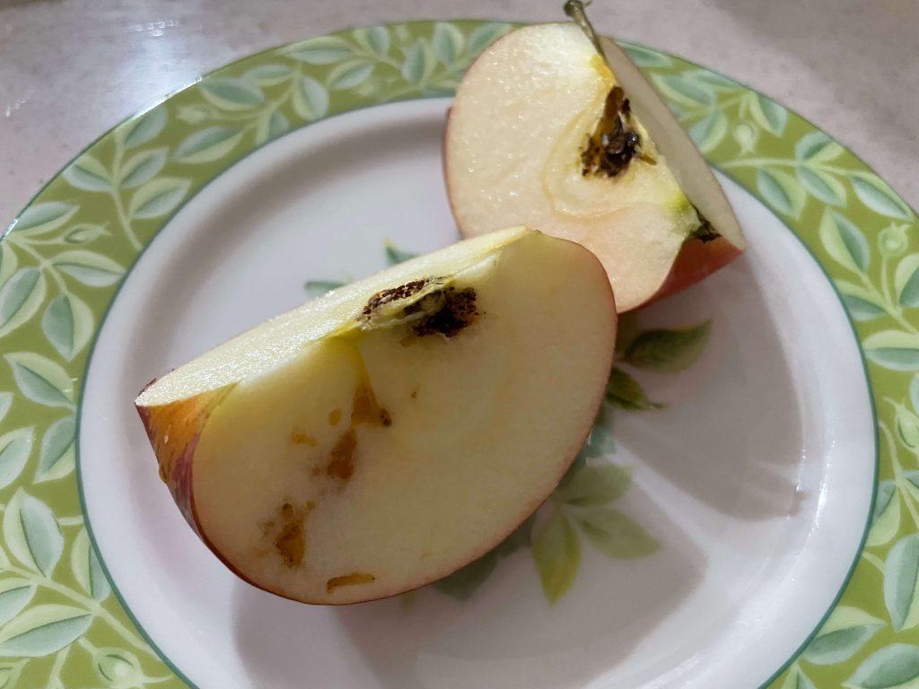 野菜ソムリエが評価:有機野菜宅配「土の味」の評判と口コミ43